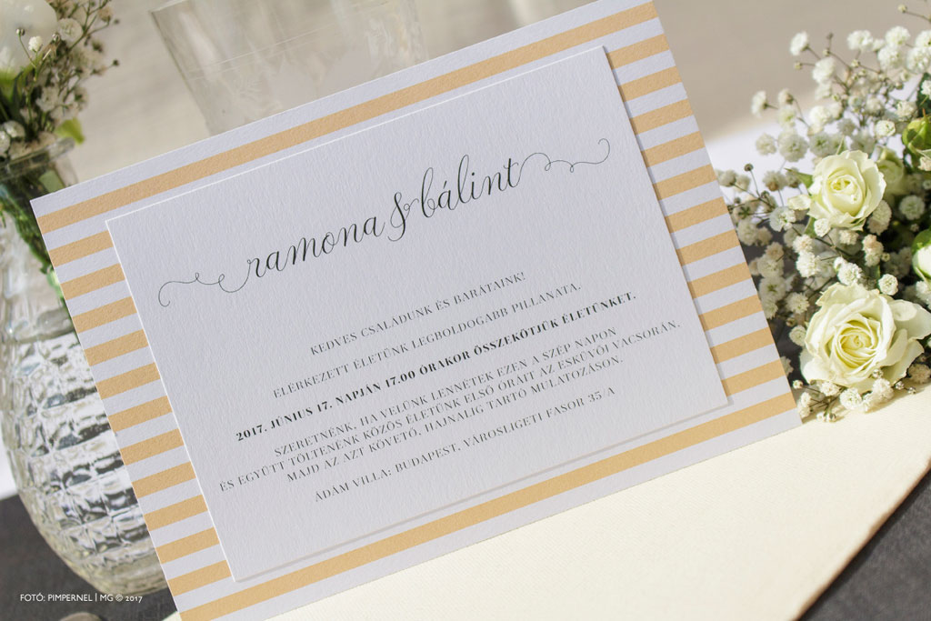 Formal Champagne Funny Edition Collection