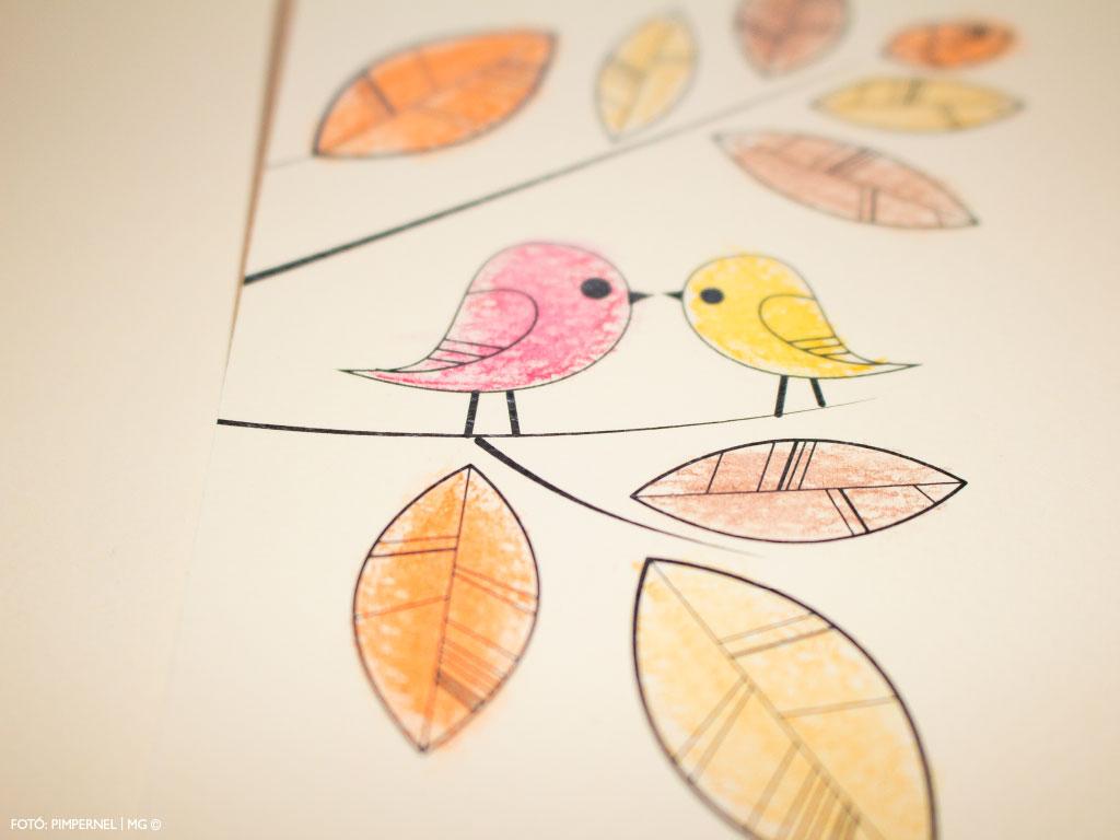 Aquarelle Birds Collection
